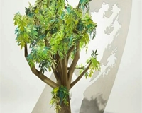 Image of a tree cutout from paper
