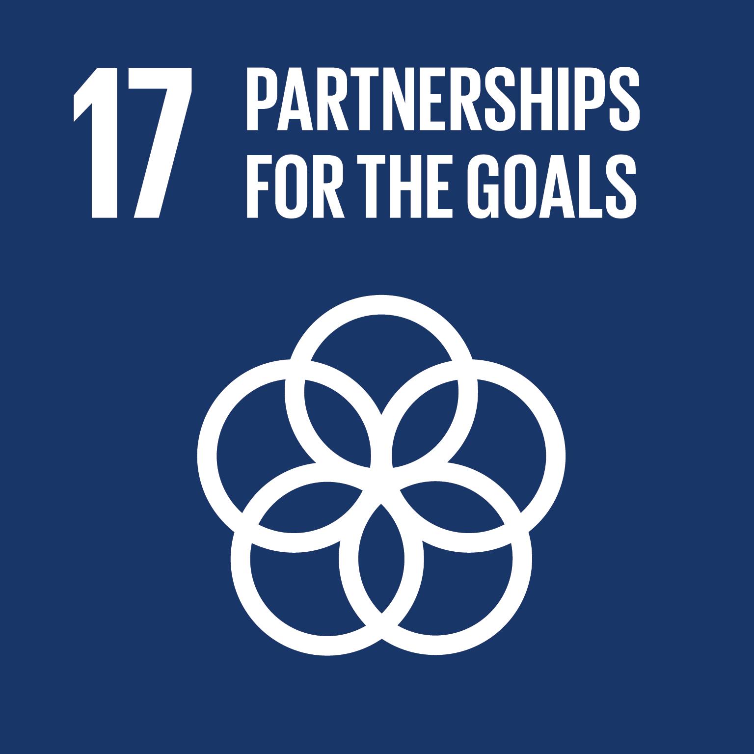 Partnerships for the Goals logo