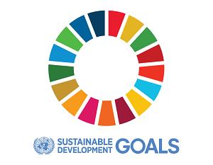 Sustainable development logo