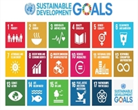Image of the Sustainable development goals